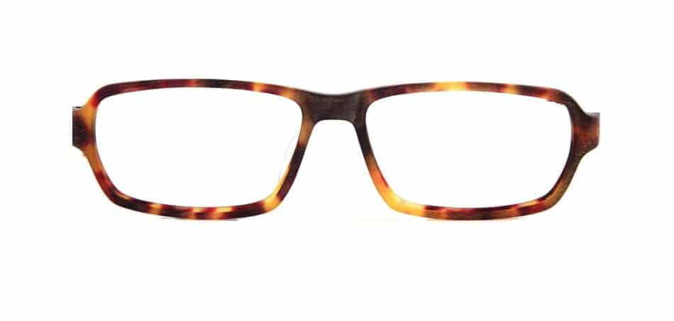 Tortoise Rectangle Glasses 310524 4