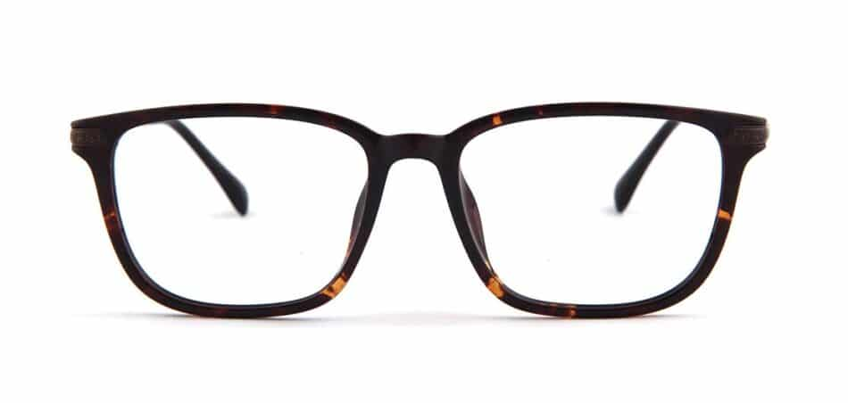 Tortoise Rectangle Glasses 130726 1