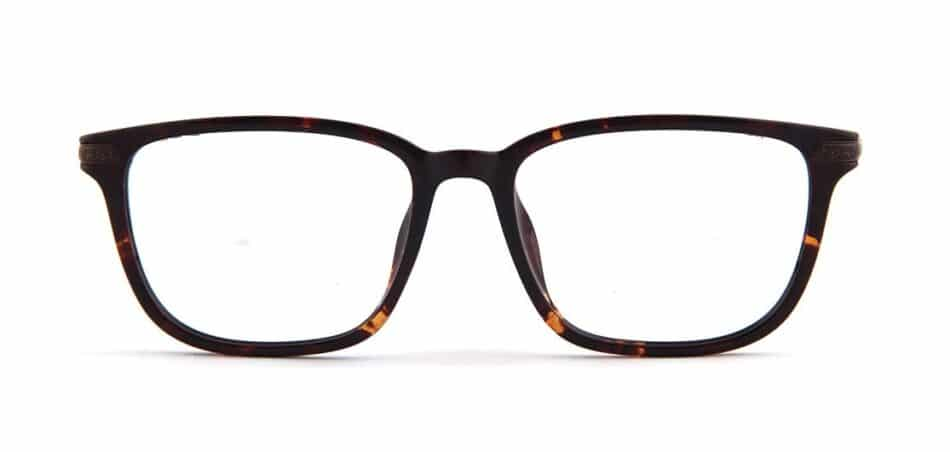 Tortoise Rectangle Glasses 130726 3