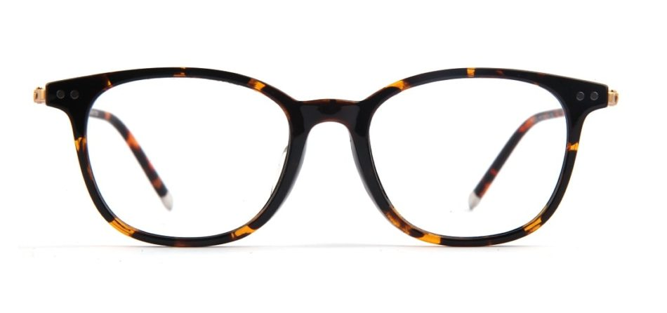 Brown Tortoise Square Glasses 050711 2